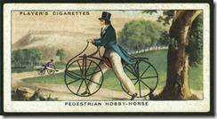 Hobby Horse Velocipede